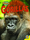 Amazing Primates: Gorillas